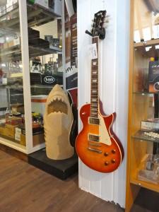 FGN E-Gitarre
