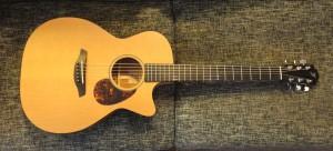 Furch Western Gitarre